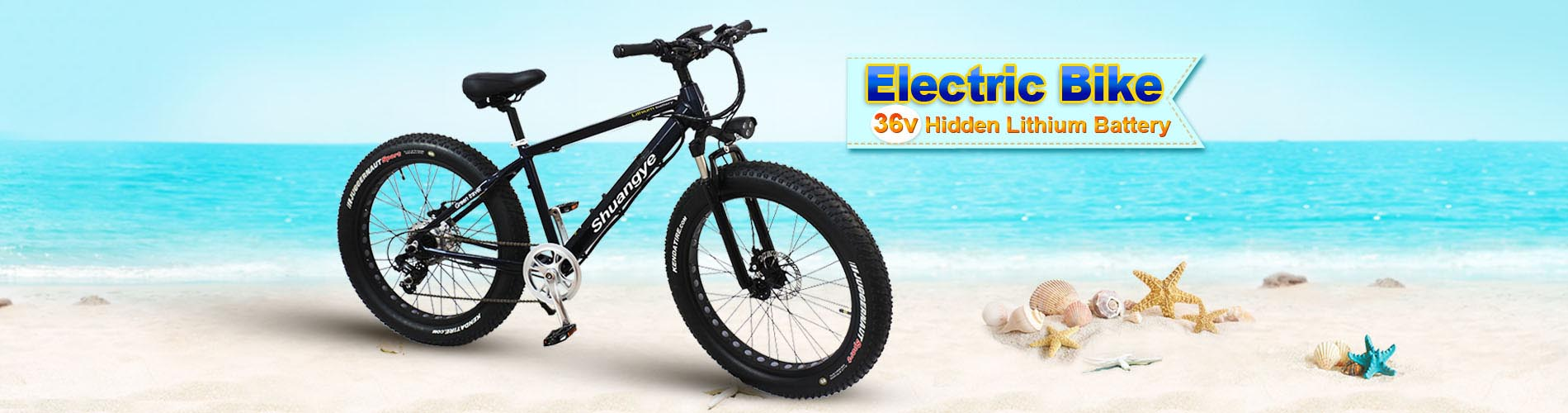 Fat tyre beach cruiser electric bike for Canada