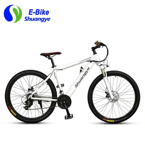 2017 bestes elektrisches Mountainbike