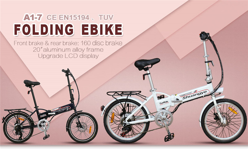 electric folding bike (1)