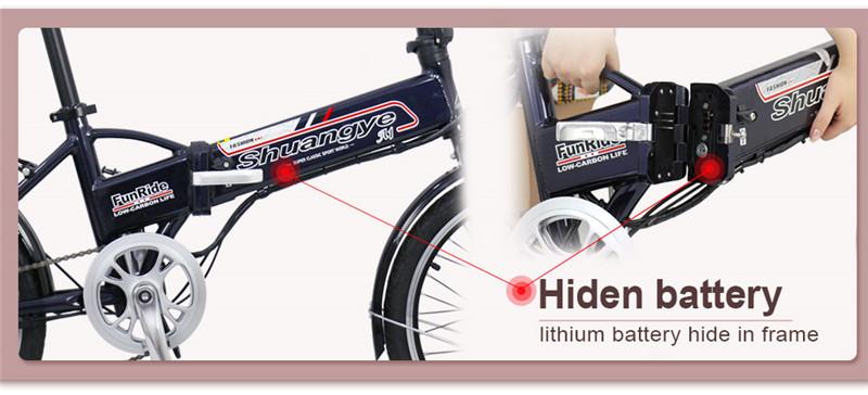 electric folding bike (4)