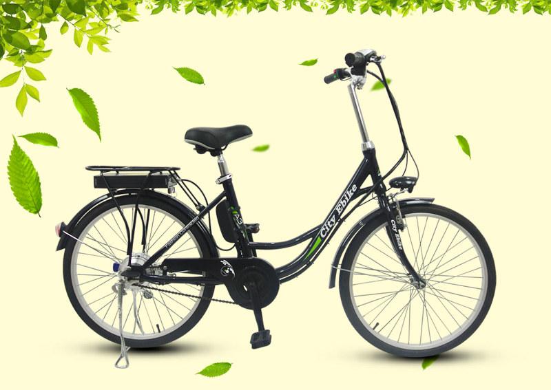 e bike 03