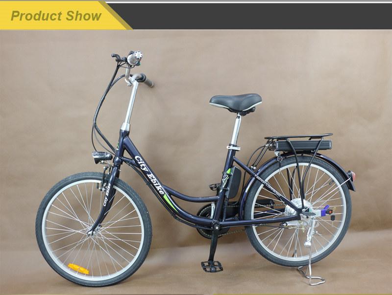 e bike 06