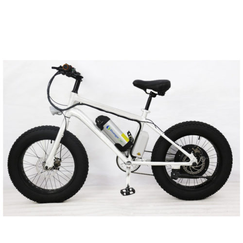 fat bike electric 01