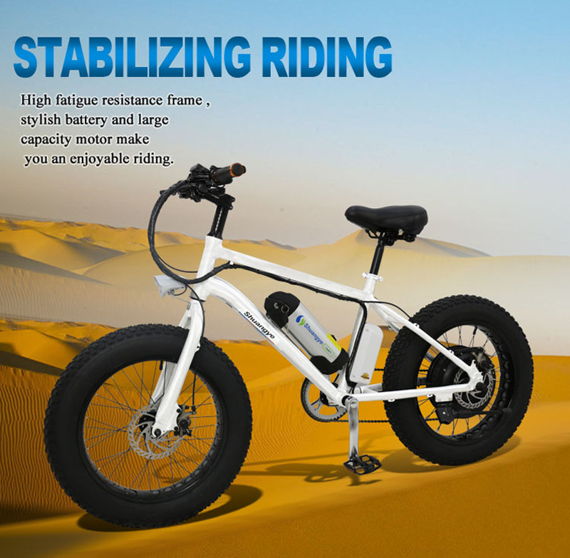 fat bike electric 02