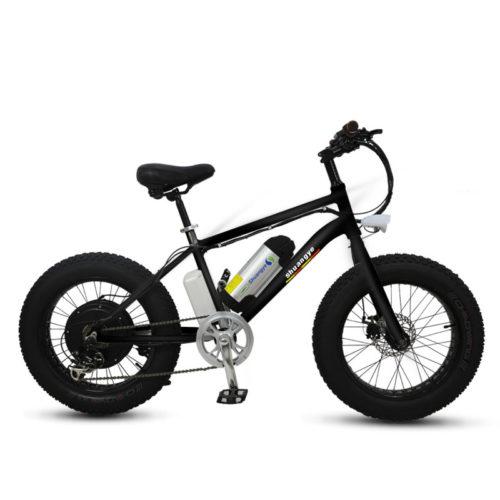 fat bike electric 04