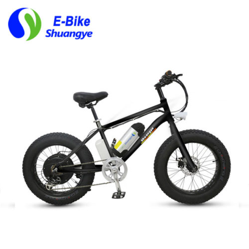 fat bike electric 20 inch frame
