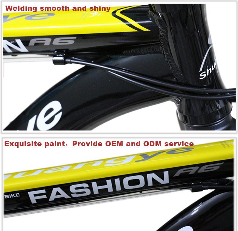 mountain bike electric 09