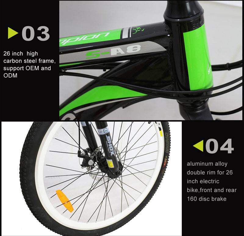 mountain e-bike 02