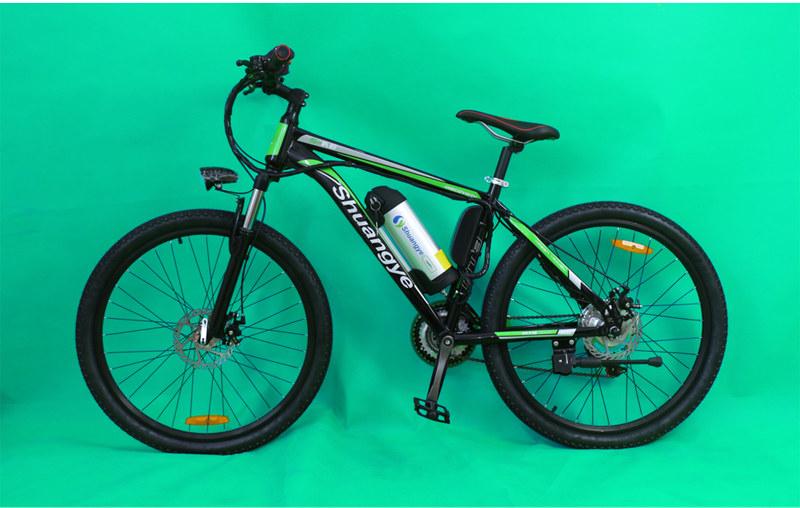mountain e-bike 04