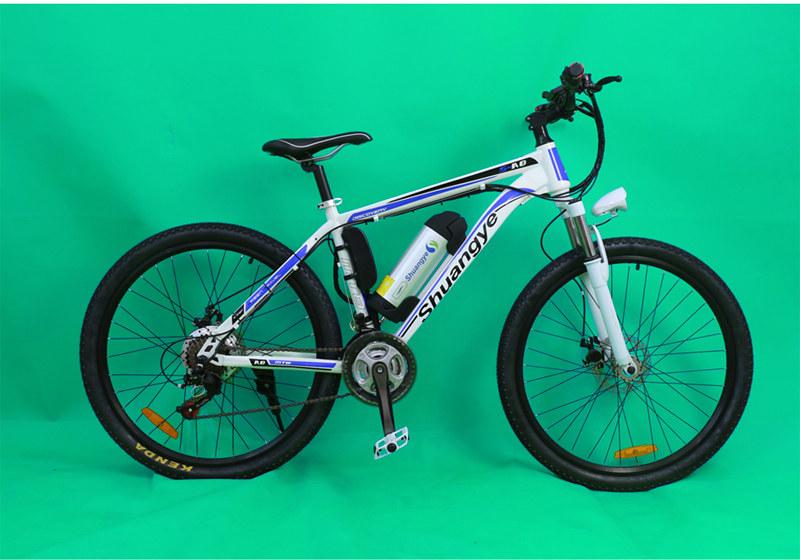mountain e-bike 05