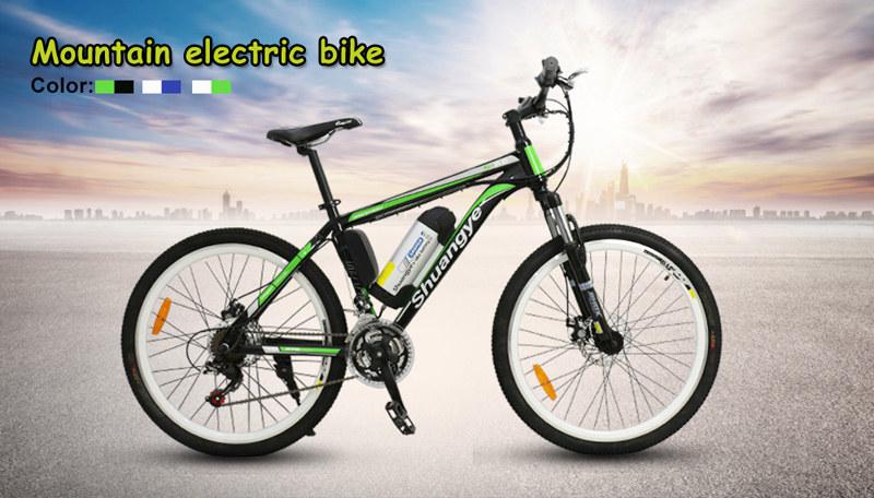 mountain e-bike 10