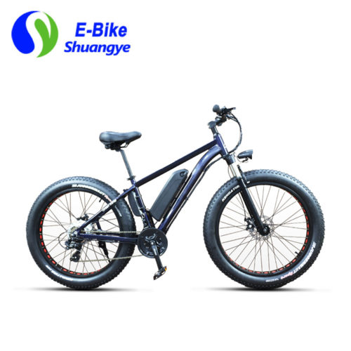 Electric fat bike 21 speed upgrade ebike