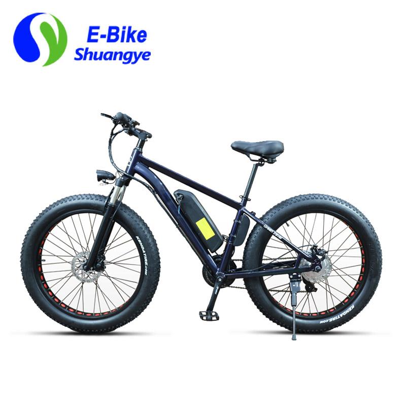 fat electric bike 6