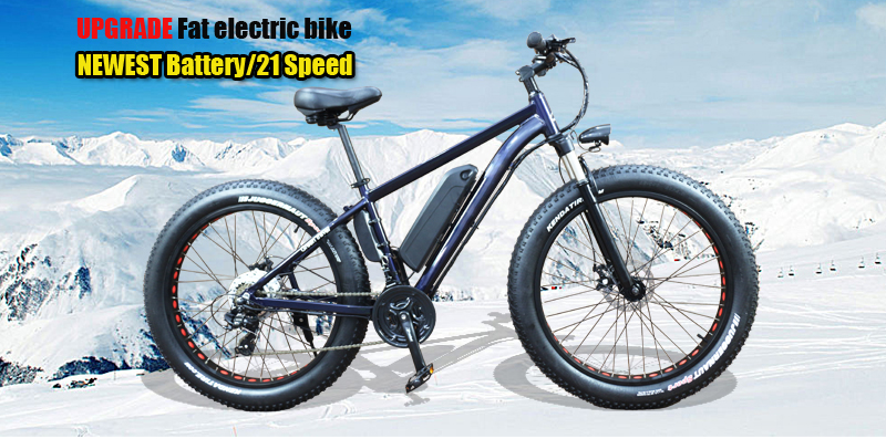 fat-electric-bike_01
