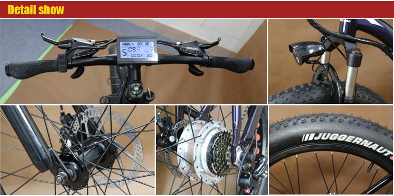 fat-electric-bike_03