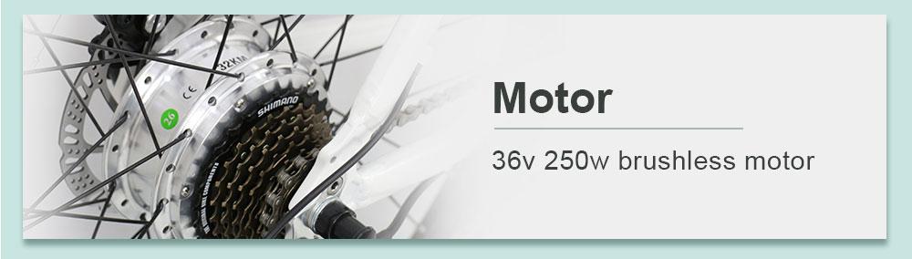 Womens Electric Mountain Bike (5)