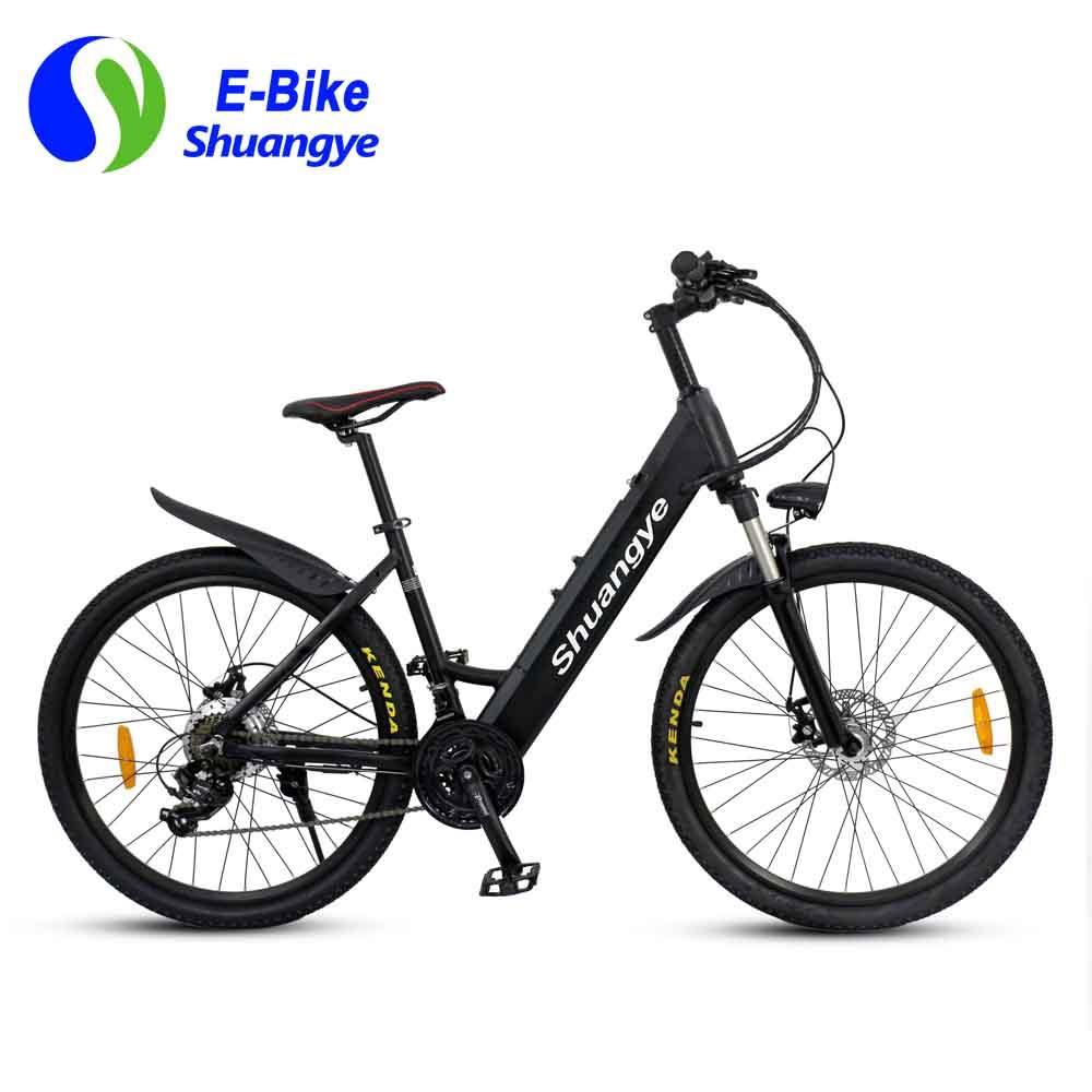 electric bike 03
