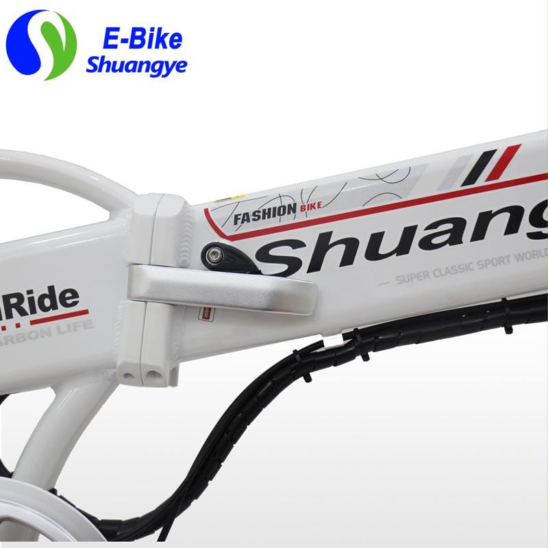 Folding electric bikes (6)