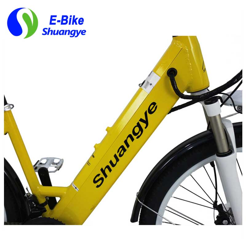 New design e-bike  (10)