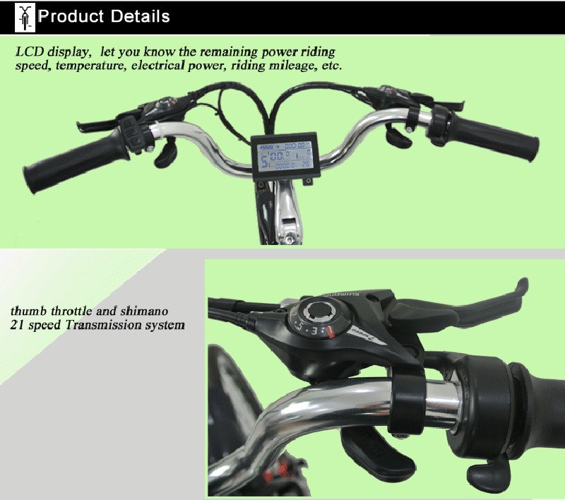 city electric bicycles (1)