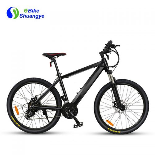 Intelligent electric bikes 36v 250W brushless motor