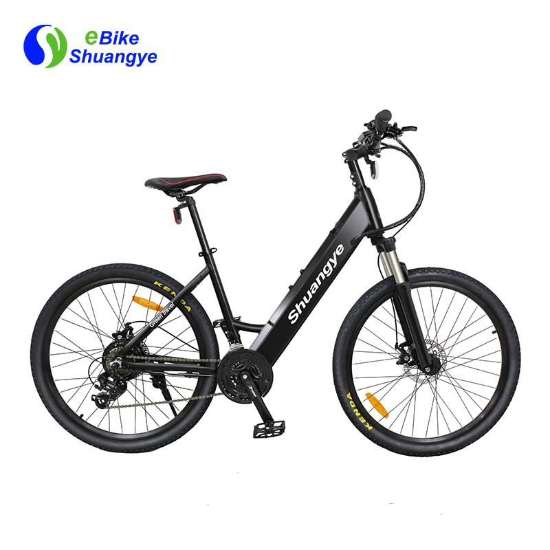 Aluminum frame best electric bicycle for sale A5AH26