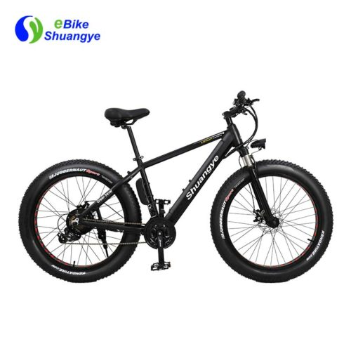 36V 250W brushless motor electric fat bike