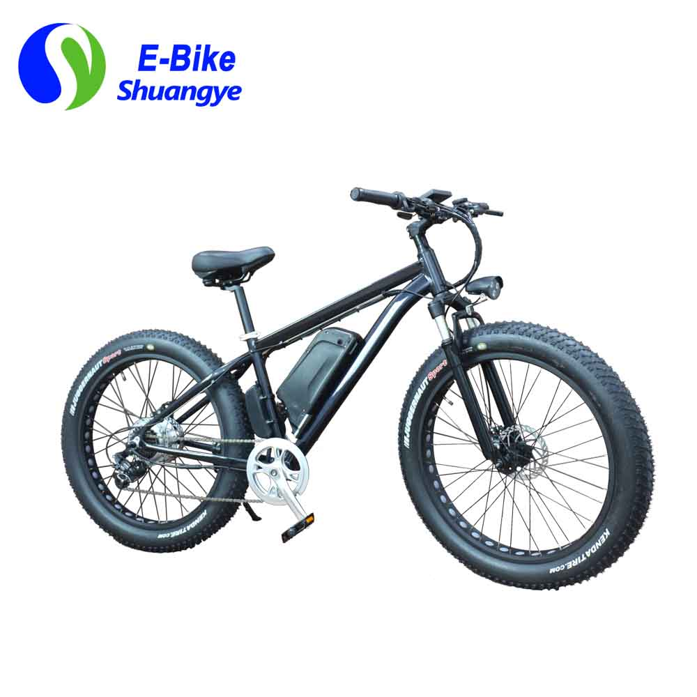 China electric bicycle (3)