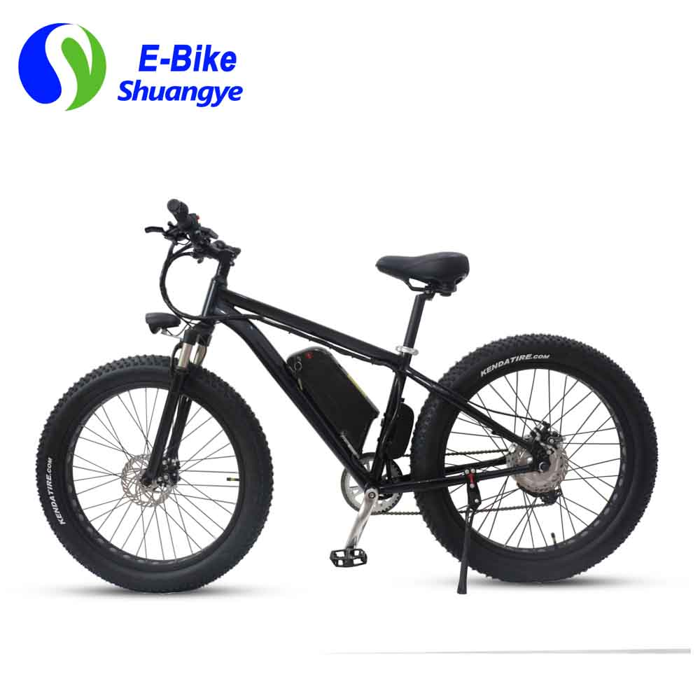 China electric bicycle (5)