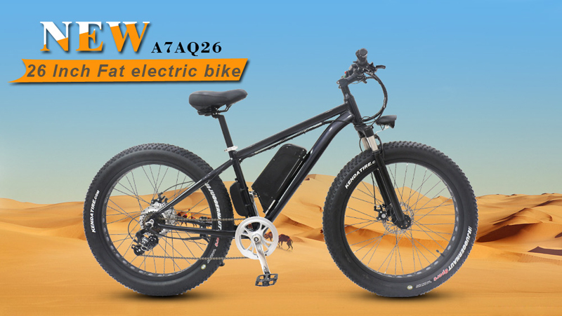 China electric bicycle