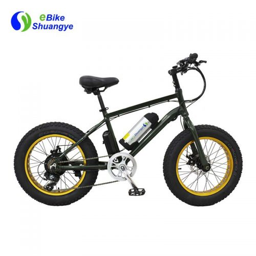 Green power fat electric bicycle 20 inch