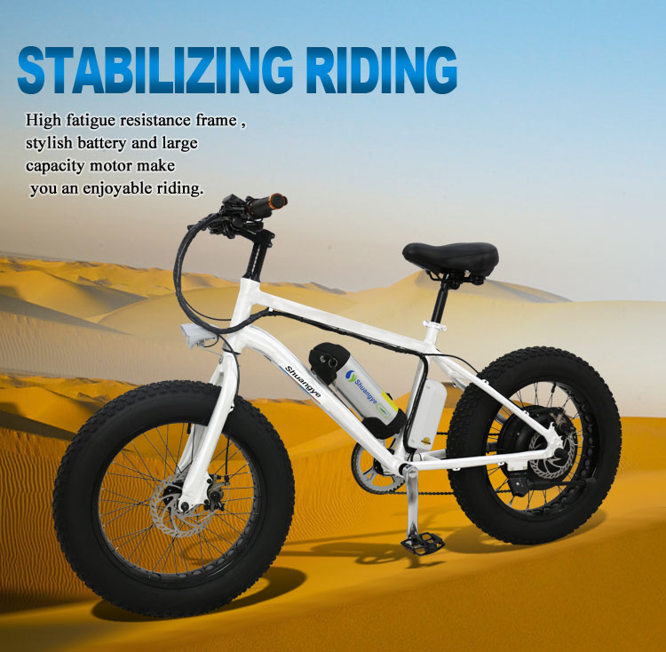 Fat e-bike (2)