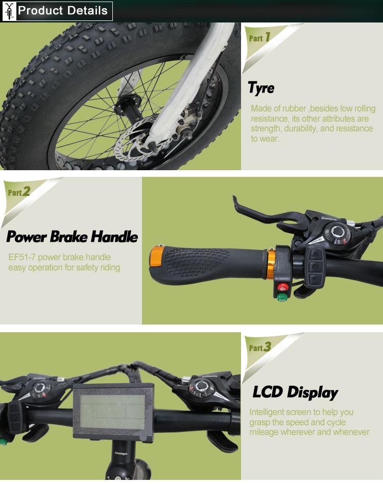 Fat e-bike (4)