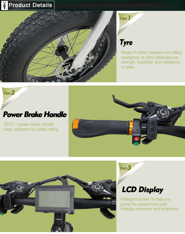 Green power fat electric bicycle (4)