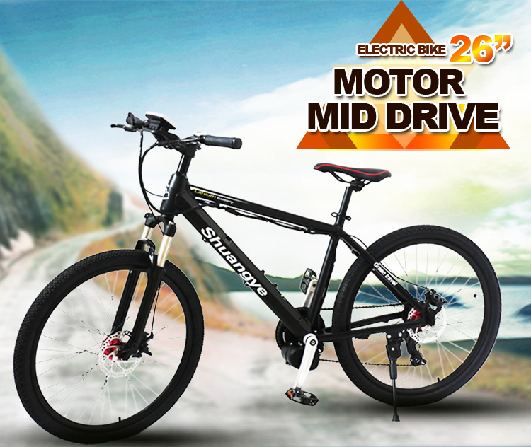 Latest electric bicycle (1)