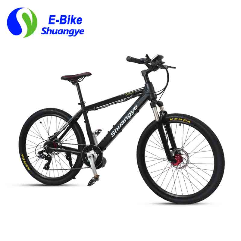 Latest electric bicycle (10)