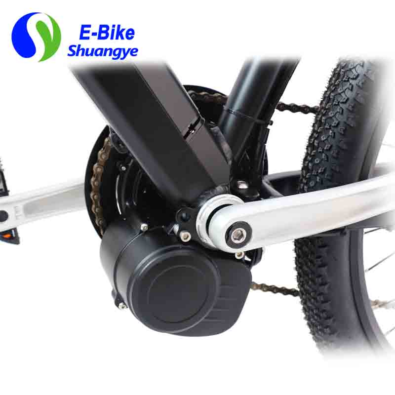 Latest electric bicycle (6)