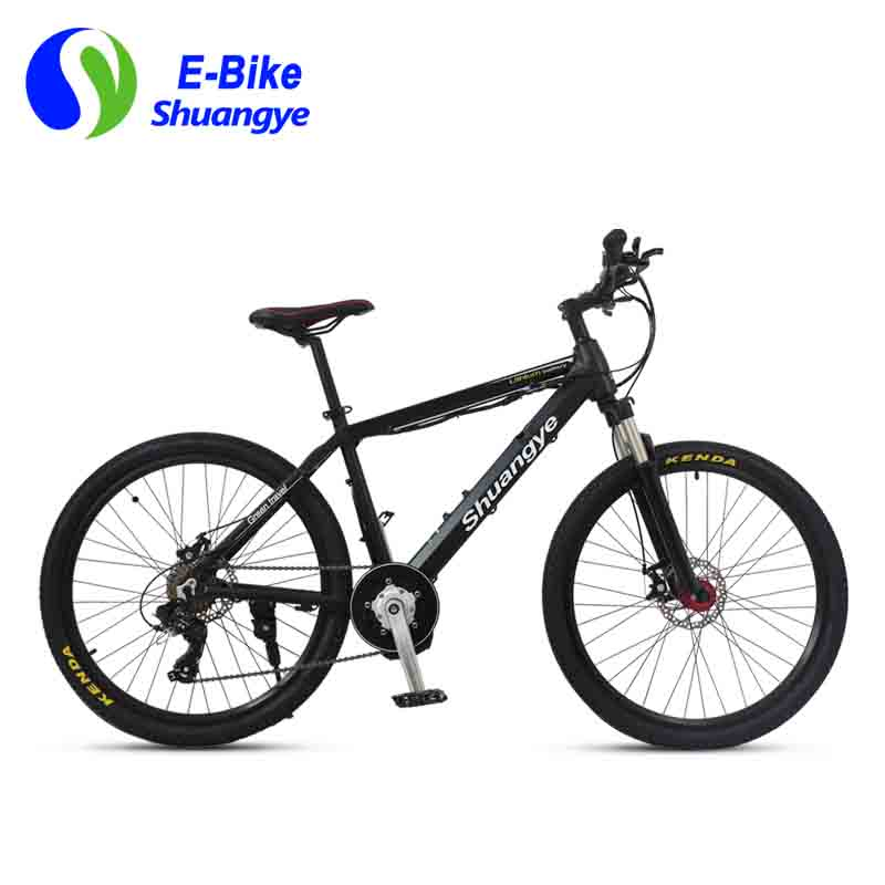 Latest electric bicycle (7)
