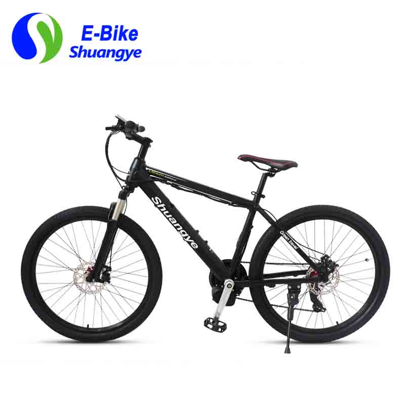 Latest electric bicycle (9)