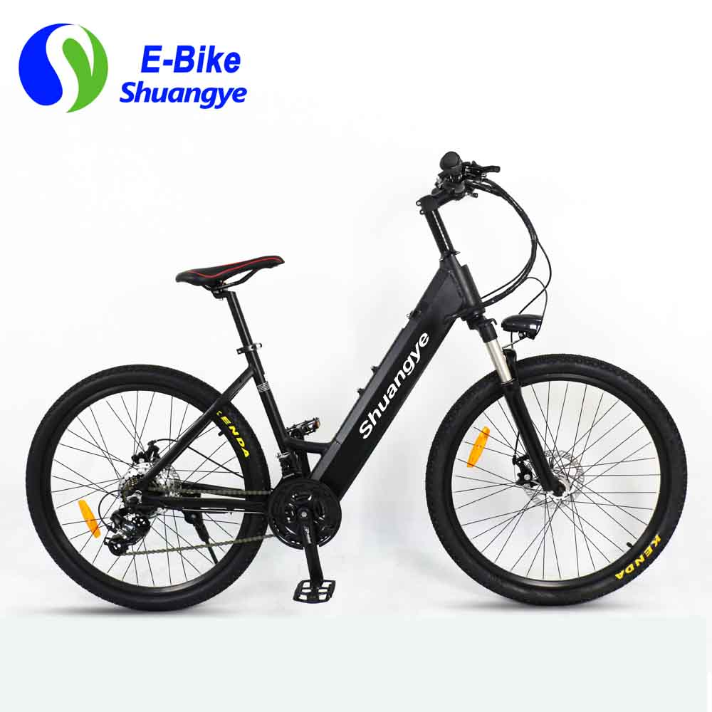 New green power electric bicycle (6)