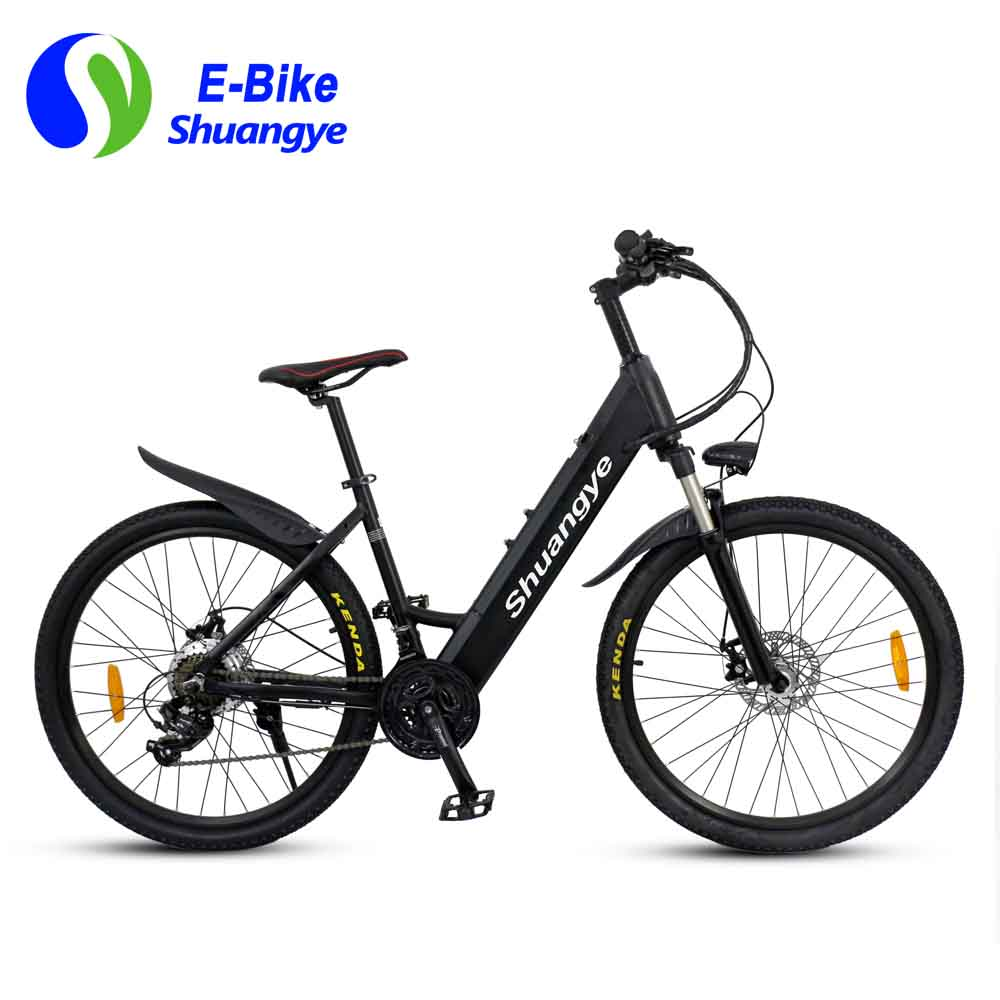 New green power electric bicycle