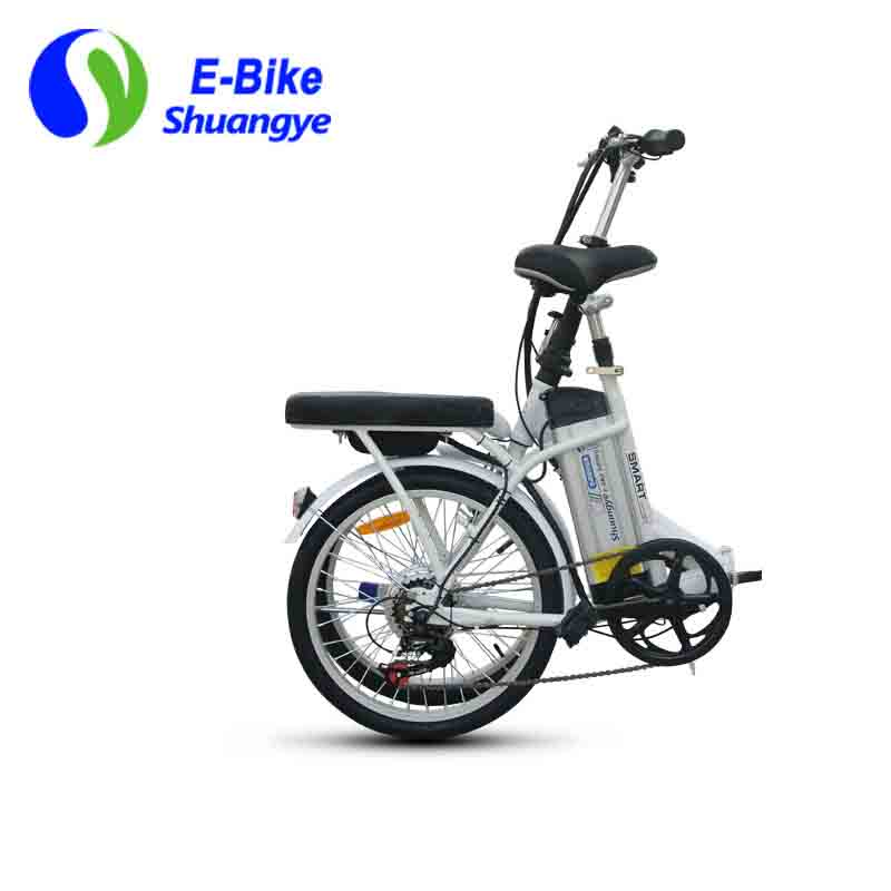 Smart electric bike  (3)