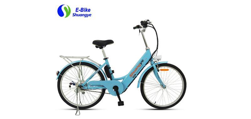 Urban electric bike (1)