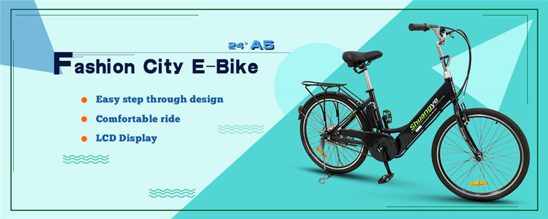Urban electric bike (3)