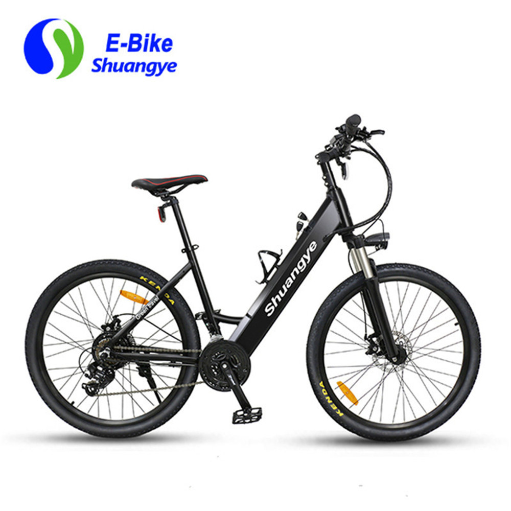 best electric bicycle (12)