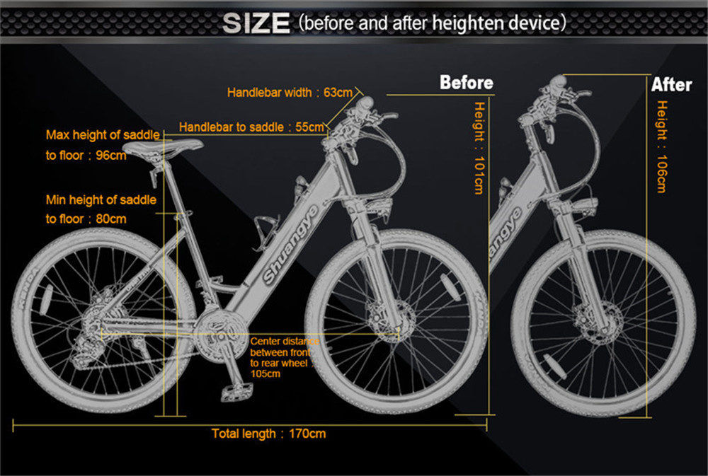 best electric bicycle (4)