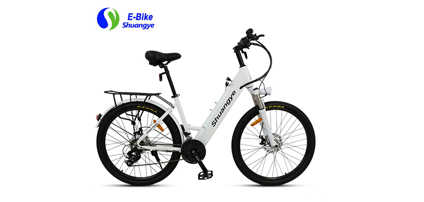 best electric bicycle (5)