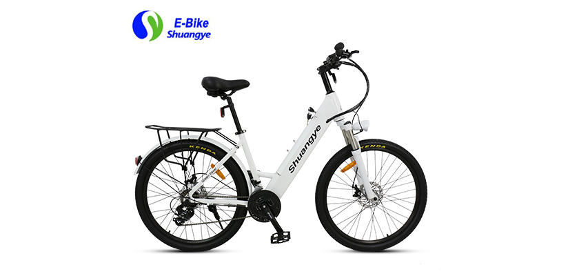 best electric bicycle (6)
