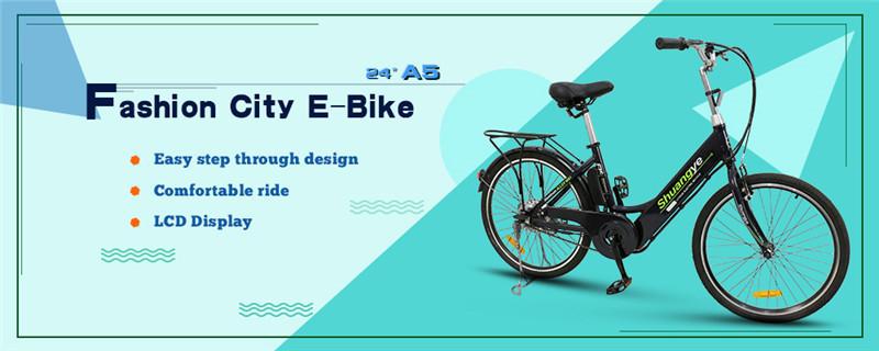 city e bike (3)