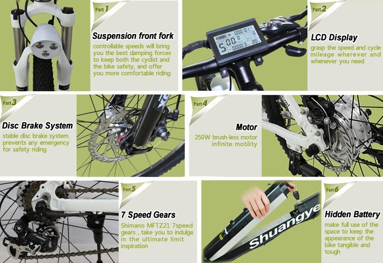e-mountain bikes (10)